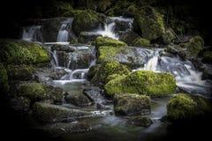 Siklawa w Lumsdale dolinie, Matlock, Derbyshire, Szczytowy Dist zdjęcie royalty free
