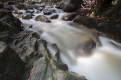 Siklawa w Malezja tropikalnym lesie deszczowym Fotografia Royalty Free