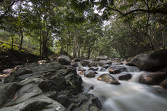 Siklawa w Malezja tropikalnym lesie deszczowym Obraz Stock