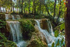 Siklawa w Meksyk Oszałamiająco siklawy Agua Azul blisko Palenque Chiapas Obraz Royalty Free