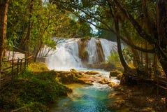 Siklawa w Meksyk Oszałamiająco siklawy Agua Azul blisko Palenque Chiapas Obrazy Stock