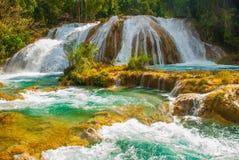 Siklawa w Meksyk Oszałamiająco siklawy Agua Azul blisko Palenque Chiapas Zdjęcia Royalty Free