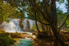 Siklawa w Meksyk Oszałamiająco siklawy Agua Azul blisko Palenque Chiapas Cud natura Zdjęcie Stock