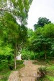 Siklawa w natura parku, Tajlandia Zdjęcia Stock