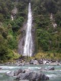 Siklawa w Nowa Zelandia miejscowym Bush na zachodnim wybrzeżu zdjęcia royalty free