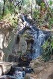 Siklawa w ogródzie botanicznym w Pretoria, Południowa Afryka Zdjęcia Royalty Free