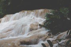 siklawa w tropikalny las deszczowy kaskadzie w las wody spływaniu w tro Obraz Stock