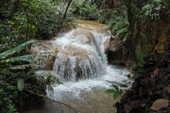 siklawa w tropikalny las deszczowy kaskadzie w las wody spływaniu w tro Zdjęcia Royalty Free