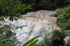 siklawa w tropikalny las deszczowy kaskadzie w las wody spływaniu w tro Zdjęcie Stock