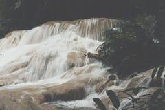 siklawa w tropikalny las deszczowy kaskadzie w las wody spływaniu w tro Obrazy Royalty Free