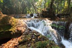 Siklawa w tropikalnym lesie deszczowym obraz royalty free