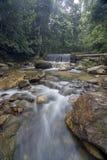 Siklawa w tropikalnym lesie deszczowym Malezja Obrazy Stock