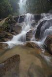 Siklawa w tropikalnym lesie deszczowym Malezja Zdjęcie Royalty Free
