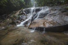 Siklawa w tropikalnym lesie deszczowym Malezja Zdjęcie Stock