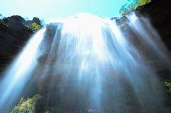 Siklawa w tropikalnym lesie deszczowym przy Wentworth Spada, Nowe południowe walie, Australia zdjęcie royalty free