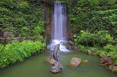 Siklawa w tropikalnym zen ogródzie Fotografia Stock