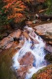 Siklawa w złotym spadku lesie Zdjęcie Stock