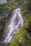 Siklawa w zieleń krajobrazie przy ogródem botanicznym Ribeira robi G zdjęcie stock