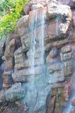 Siklawa w zoo Los Angeles Zdjęcie Royalty Free