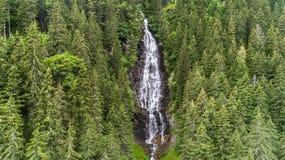 Siklawa Wzburzony Cascada Zbuciumata Fagaras góry, Ro Fotografia Royalty Free