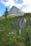 Siklawa wzdłuż Icefields Parkway w Kanadyjskich Skalistych górach między Banff i jaspisem Obraz Stock