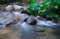 Siklawa z kamieniem zielony mech w lesie tropikalnym, Kiriwong Vil Zdjęcia Royalty Free
