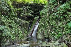 Siklawa z lasem na górze w Krok-E-Dok siklawie fotografia royalty free