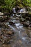 Siklawa z mostem w Naturalnej rezerwaci Cheile Nerei, Rumunia Obrazy Stock