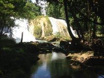 siklawy Agua Azul w Chiapas Zdjęcia Royalty Free