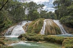 Siklawy Agua Azul w Chiapas Zdjęcia Stock