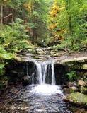 Siklawy, góry Jeseniky, republika czech, Europa Fotografia Royalty Free