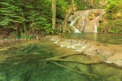 Siklawy, kaskady i przejrzysta zatoka w lesie, Beusnita park narodowy, Rumunia Fotografia Royalty Free