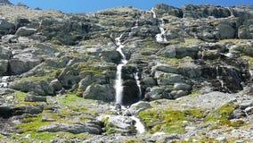 Siklawy płynie w idyllicznym uncontaminated środowiska skrzyżowaniu zielenieją łąki i głazy na Alps w lecie zbiory wideo