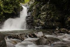 Siklawy panorama w tropikalnym lesie zdjęcia stock
