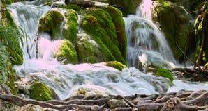 Siklawy Plitvice park narodowy w Chorwacja fotografia royalty free