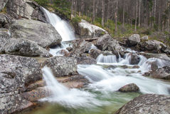Siklawy przy strumienia Studeny potokiem w Wysokim Tatras, Sistani Obraz Stock