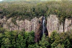 Siklawy Springbrook park narodowy zdjęcia stock