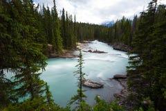 Siklawy tęsk ujawnienie, Skaliste góry w Kanada Zdjęcia Stock