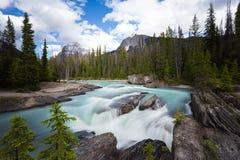 Siklawy tęsk ujawnienie, Skaliste góry w Kanada Fotografia Stock