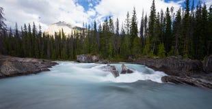 Siklawy tęsk ujawnienie, Skaliste góry w Kanada Zdjęcie Stock