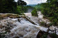 Siklawy w Agua Azul, Chiapas, Meksyk Fotografia Stock