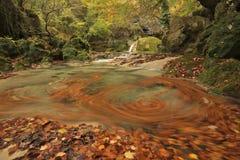 Siklawy, wod kaskady, lasów spadki Scena, sceneria Zdjęcie Stock