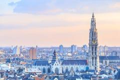 Sikt över Antwerp med domkyrkan av vår tagna dam Royaltyfria Foton