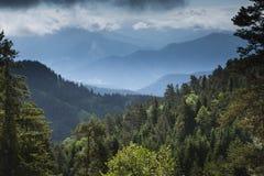 Sikt över berg och skog Royaltyfria Bilder