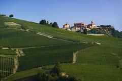 Sikt över byn av La Morra och vingårdarna av den Langa pajen Royaltyfria Bilder