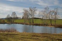 Sikt över dammet/sjön Bachracek i vår Blått vatten och himmel, grönt fält, threes royaltyfri bild