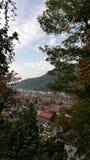 Sikt över de röda taken av den gamla staden av Heidelberg från kullen Arkivbilder