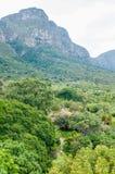 Sikt över delen av de Kirstenbosch botaniska trädgårdarna Royaltyfri Foto