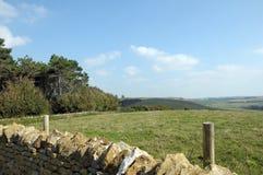 Sikt över den Dorset kusten, Abbotsbury trädgårdar Royaltyfri Fotografi