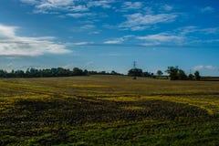 Sikt över det Buckinghamshire fältet Arkivfoto
